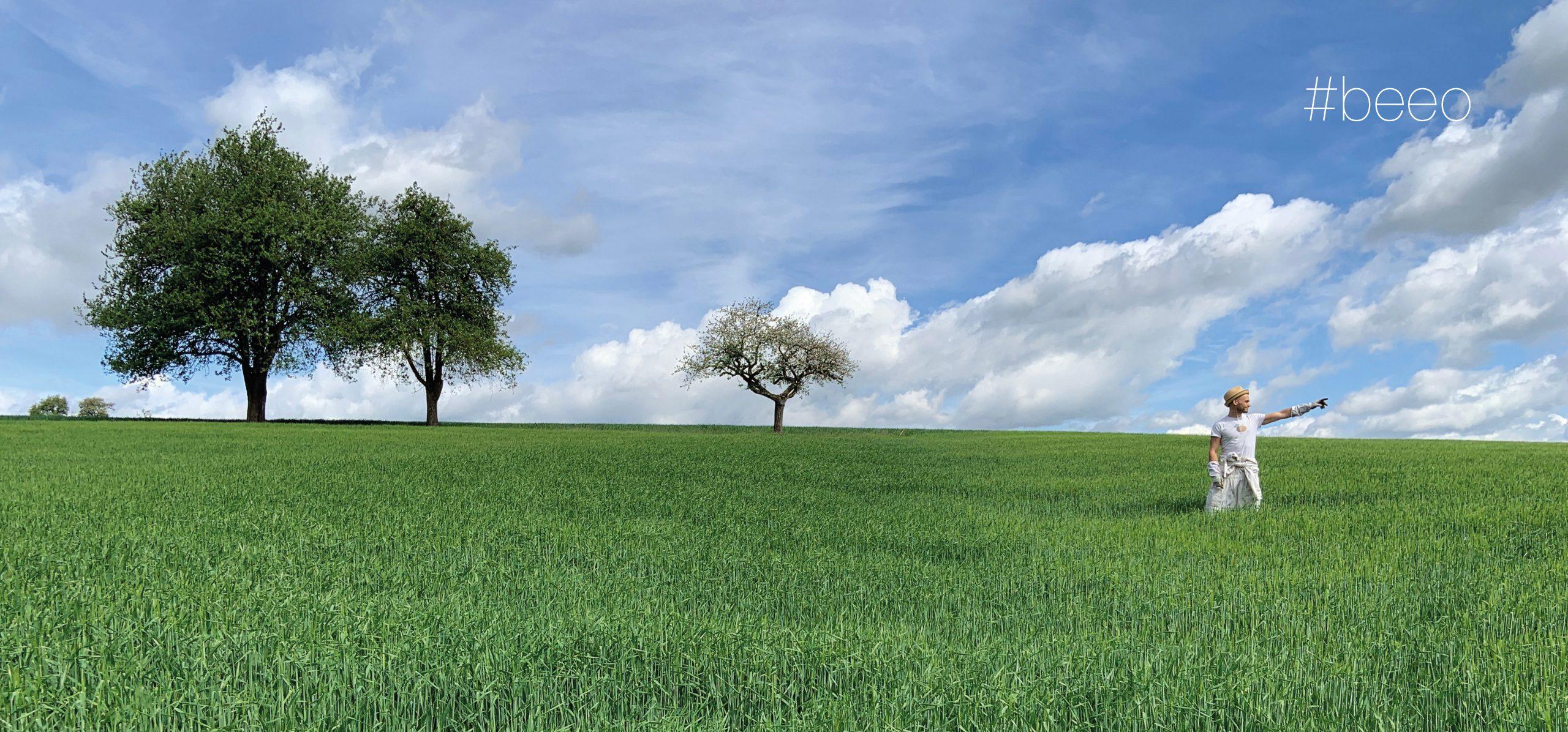 bio-honig-imker-blütenhonig-waldhonig-biologische-landwirtschaft-österreich-mostviertel